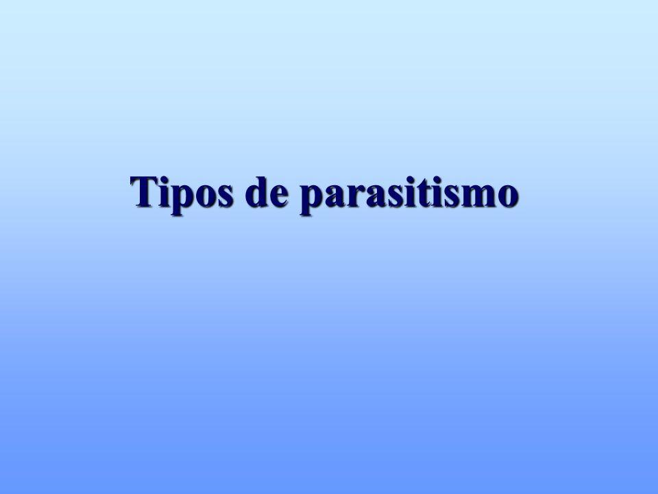 DIRECTO SEMI-DIRECTO INDIRECTO Necesita de trasmisores biológicos TRASPLACENTARIA