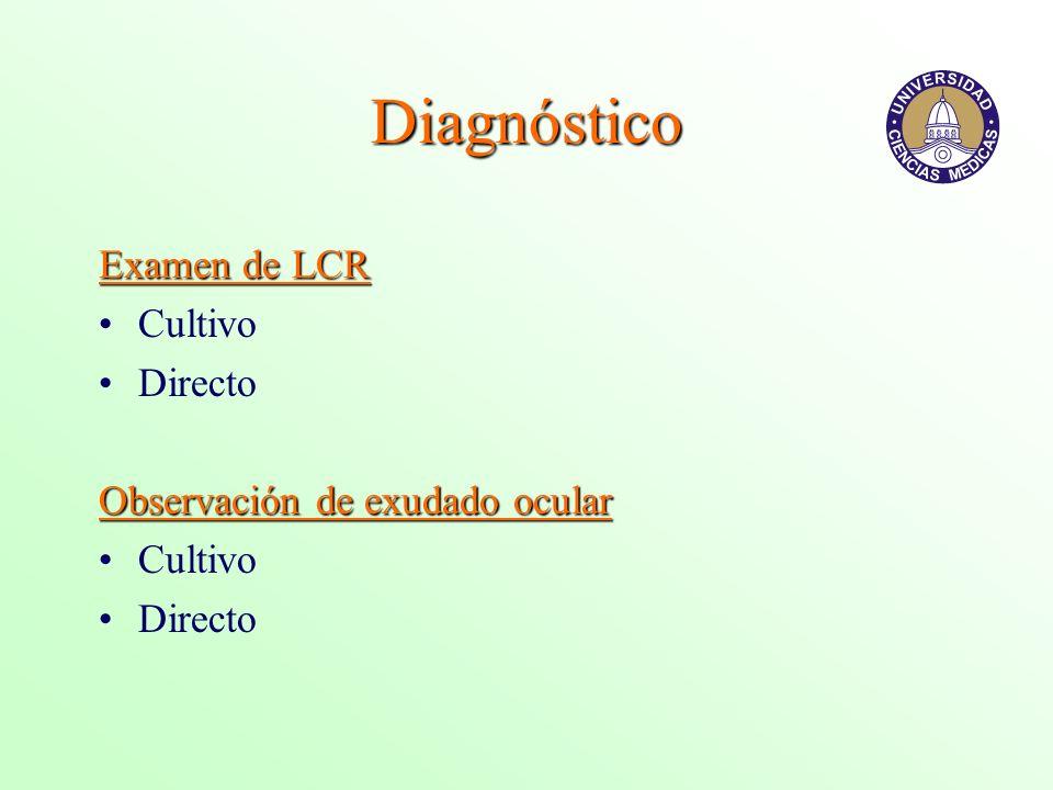 Diagnóstico Examen de LCR Cultivo Directo Observación de exudado ocular Cultivo Directo