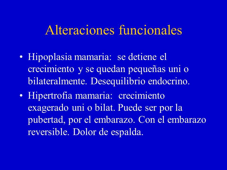 Alteraciones funcionales Hipoplasia mamaria: se detiene el crecimiento y se quedan pequeñas uni o bilateralmente. Desequilibrio endocrino. Hipertrofia