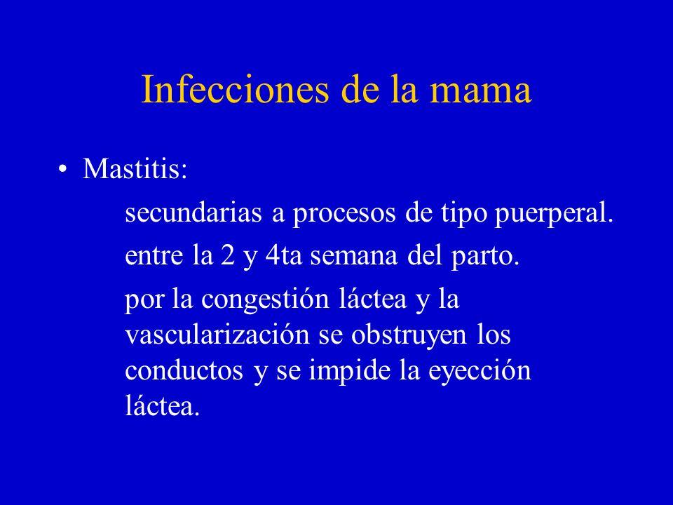 Infecciones de la mama Mastitis: secundarias a procesos de tipo puerperal. entre la 2 y 4ta semana del parto. por la congestión láctea y la vasculariz