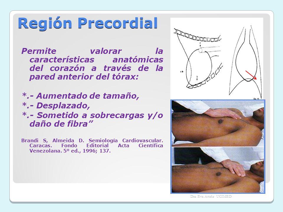 Región Precordial Permite valorar la características anatómicas del corazón a través de la pared anterior del tórax: *.- Aumentado de tamaño, *.- Desp