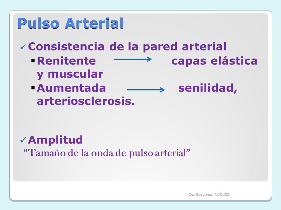 Pulso Arterial Consistencia de la pared arterial Renitente capas elástica y muscular Aumentada senilidad, arteriosclerosis. Amplitud Tamaño de la onda
