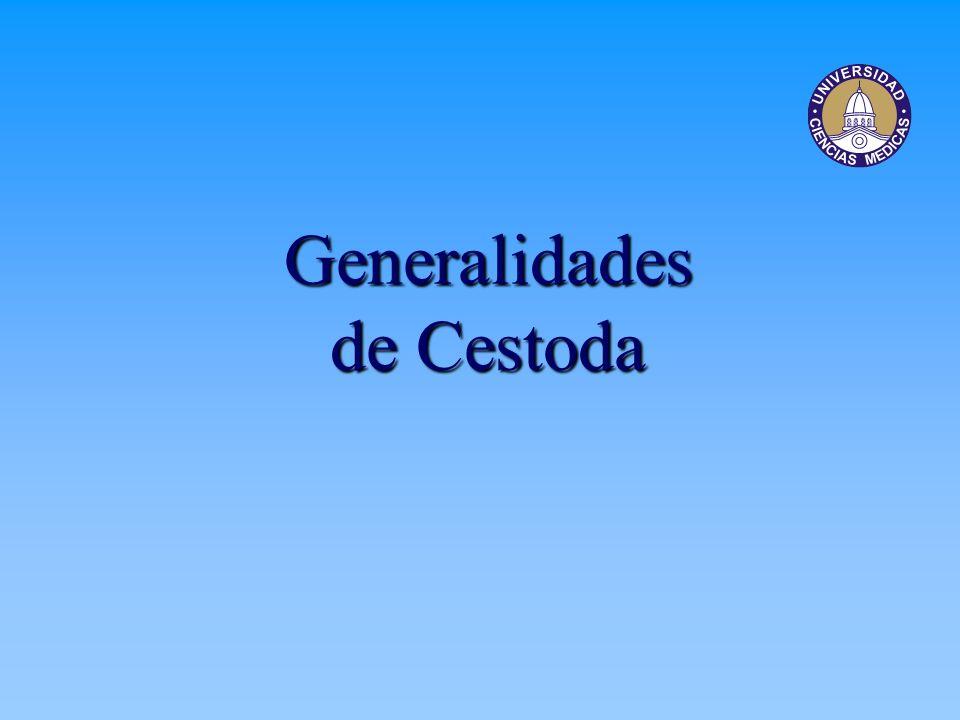 Generalidades de Cestoda