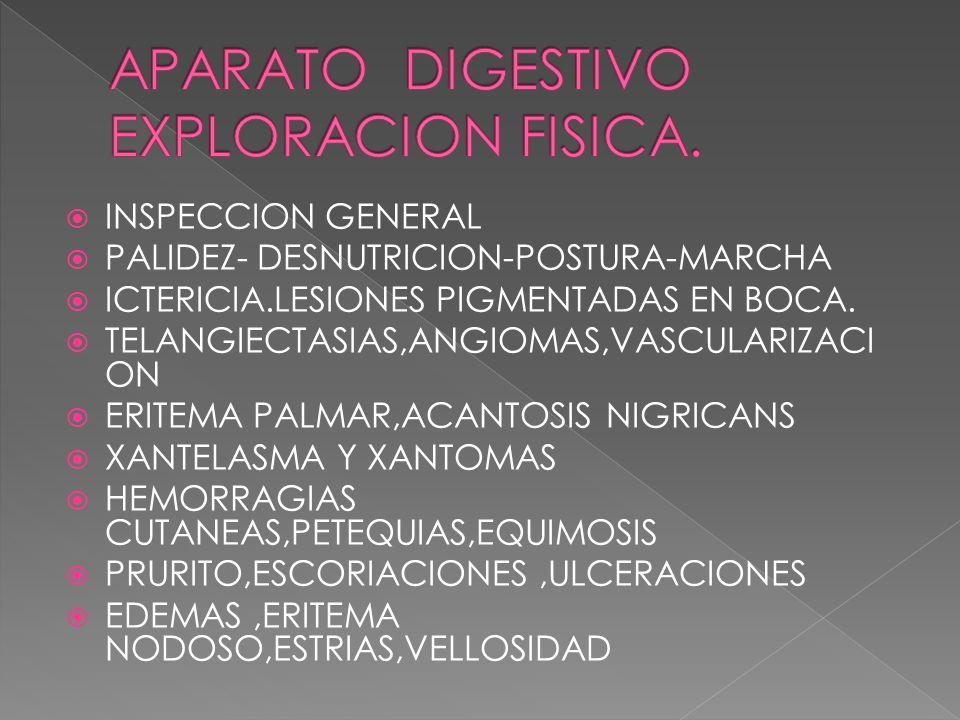 INSPECCION GENERAL PALIDEZ- DESNUTRICION-POSTURA-MARCHA ICTERICIA.LESIONES PIGMENTADAS EN BOCA. TELANGIECTASIAS,ANGIOMAS,VASCULARIZACI ON ERITEMA PALM