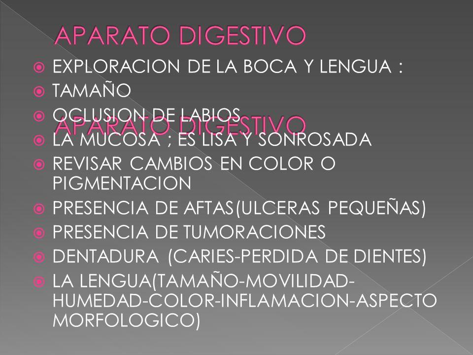EXPLORACION DE LA BOCA Y LENGUA : TAMAÑO OCLUSION DE LABIOS LA MUCOSA ; ES LISA Y SONROSADA REVISAR CAMBIOS EN COLOR O PIGMENTACION PRESENCIA DE AFTAS