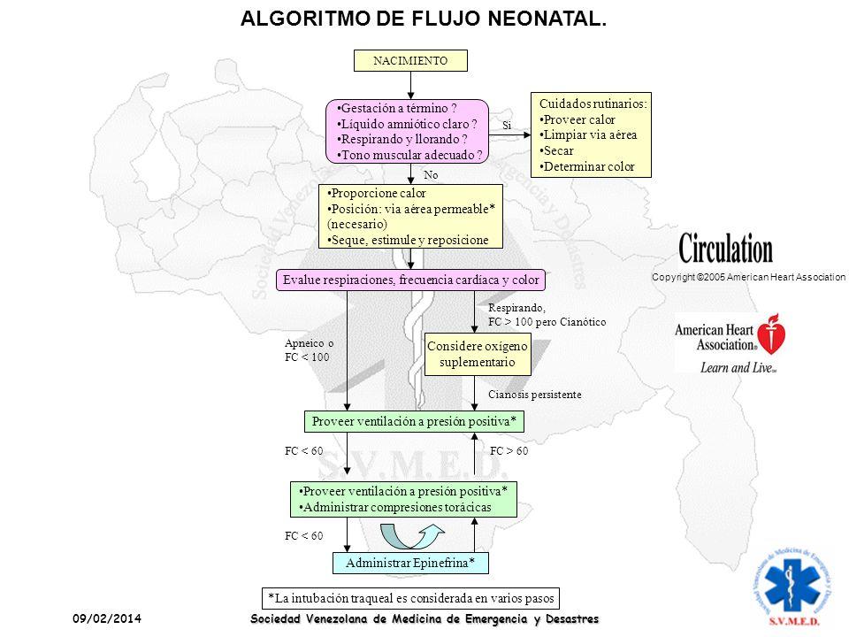 09/02/2014 Sociedad Venezolana de Medicina de Emergencia y Desastres ALGORITMO DE FLUJO NEONATAL. NACIMIENTO Cuidados rutinarios: Proveer calor Limpia