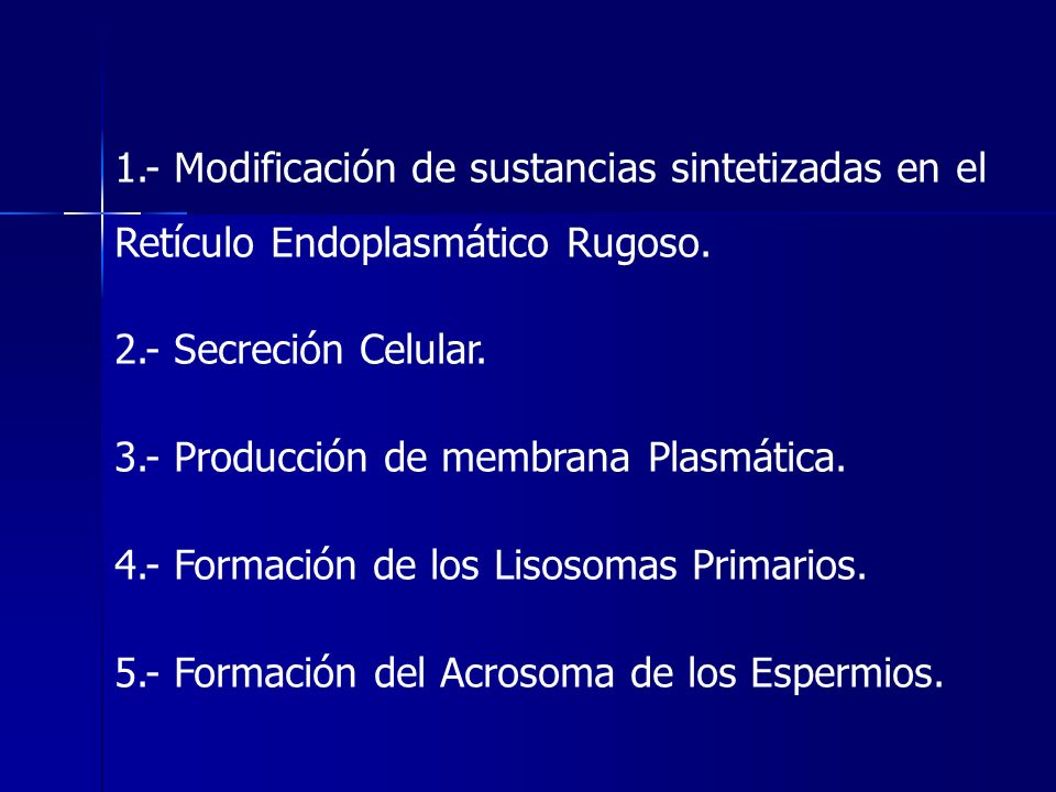 1.- Modificación de sustancias sintetizadas en el Retículo Endoplasmático Rugoso. 2.- Secreción Celular. 3.- Producción de membrana Plasmática. 4.- Fo