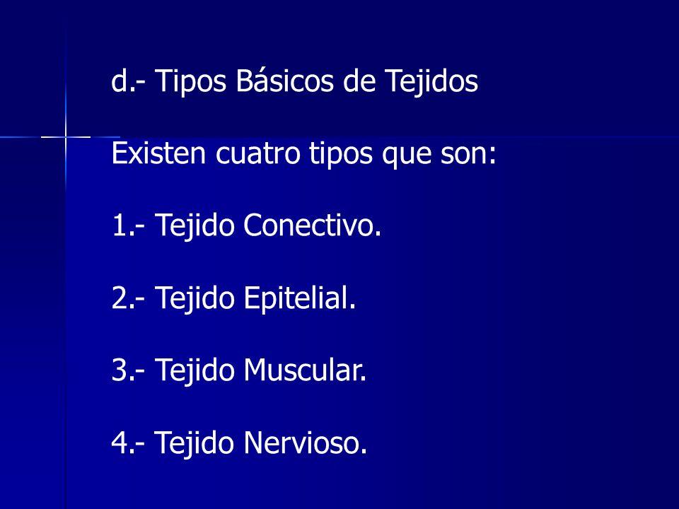 d.- Tipos Básicos de Tejidos Existen cuatro tipos que son: 1.- Tejido Conectivo. 2.- Tejido Epitelial. 3.- Tejido Muscular. 4.- Tejido Nervioso.