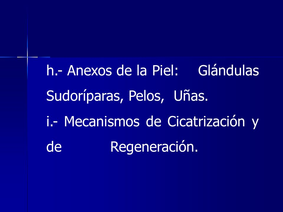 h.- Anexos de la Piel: Glándulas Sudoríparas, Pelos, Uñas. i.- Mecanismos de Cicatrización y de Regeneración.