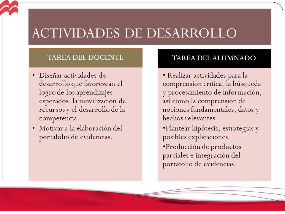 DESARROLLO / EVALUACIÓN FORMATIVA (META-APRENDIZAJE)