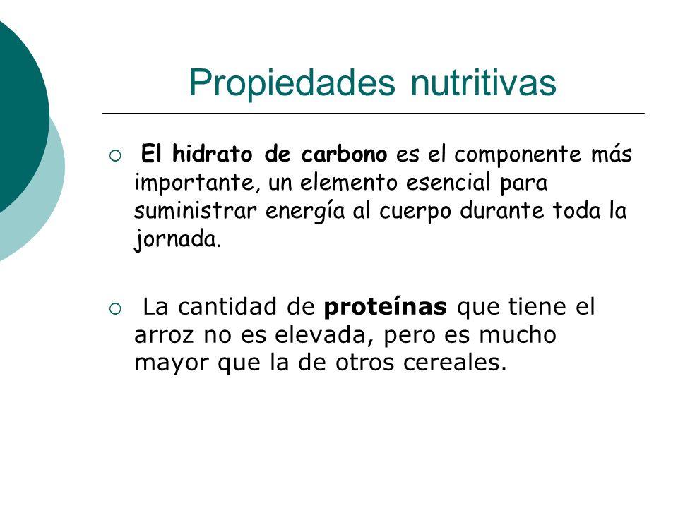 Propiedades nutritivas El hidrato de carbono es el componente más importante, un elemento esencial para suministrar energía al cuerpo durante toda la