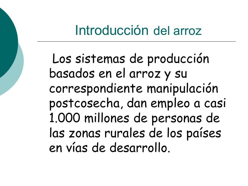 Introducción del arroz Los sistemas de producción basados en el arroz y su correspondiente manipulación postcosecha, dan empleo a casi 1.000 millones