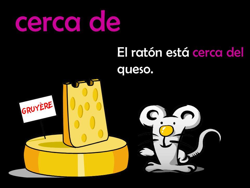 lejos de El ratón está lejos del queso.