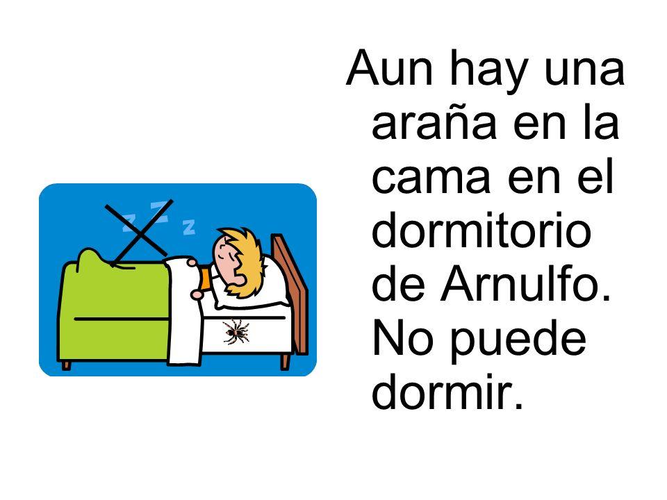 Aun hay una araña en la cama en el dormitorio de Arnulfo. No puede dormir.