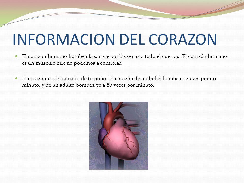 INFORMACION DEL CORAZON El corazón humano bombea la sangre por las venas a todo el cuerpo.