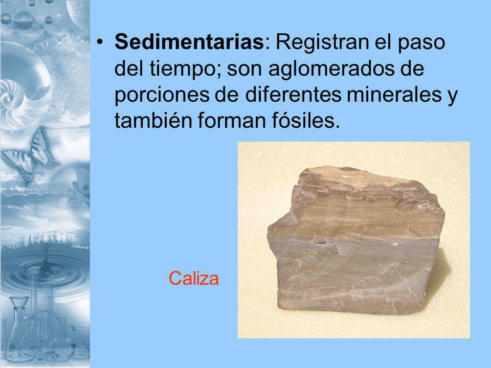 Sedimentarias: Registran el paso del tiempo; son aglomerados de porciones de diferentes minerales y también forman fósiles. Caliza