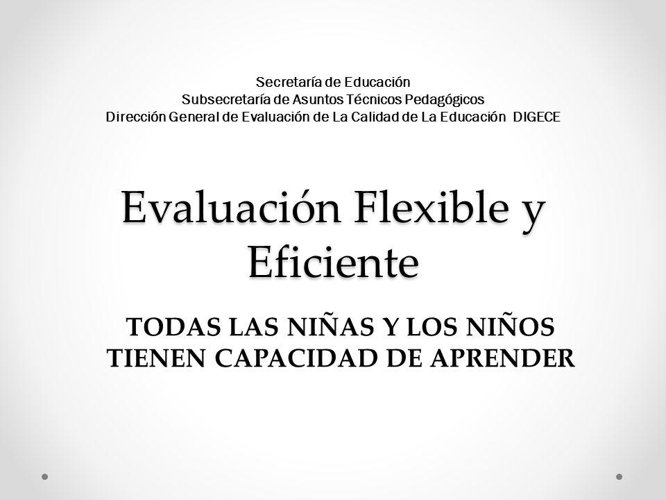 Propósitos de la evaluación flexible y eficiente Comprender que el aprendizaje es un proceso continuo, con tiempos propios para cada educando, que como tal debe ser respetado por la institución educativa.