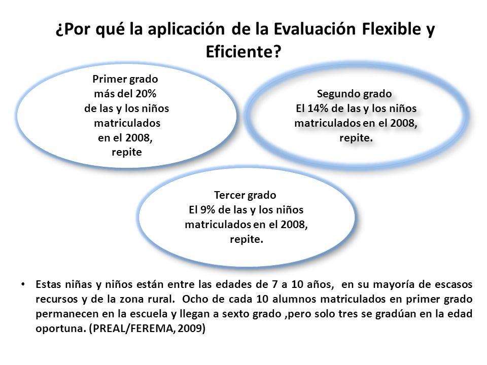¿Por qué la aplicación de la Evaluación Flexible y Eficiente? Estas niñas y niños están entre las edades de 7 a 10 años, en su mayoría de escasos recu