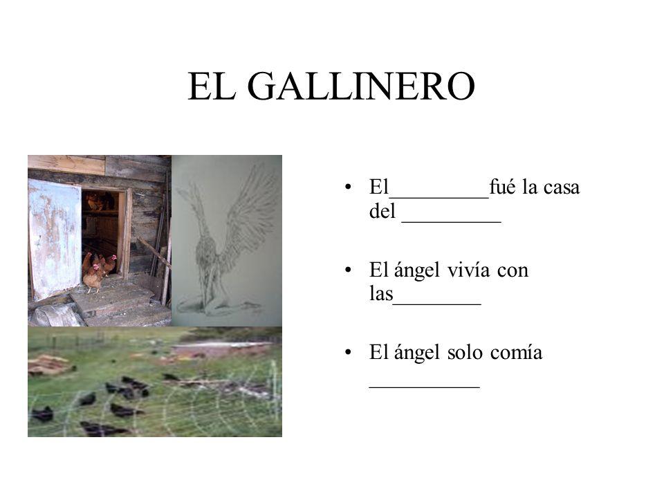 ELISENDA Elisenda vió al _____ volar.