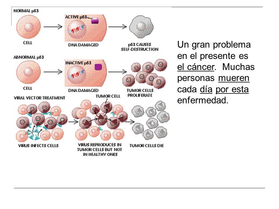 Un gran problema en el presente es el cáncer. Muchas personas mueren cada día por esta enfermedad.
