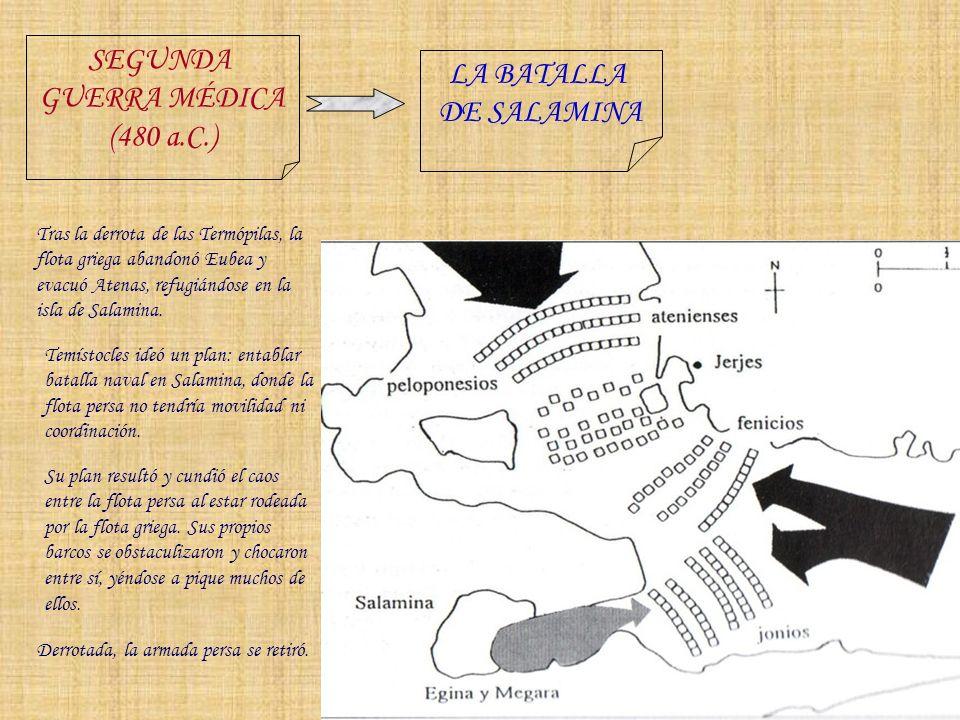 SEGUNDA GUERRA MÉDICA (480 a.C.) LA BATALLA DE SALAMINA Tras la derrota de las Termópilas, la flota griega abandonó Eubea y evacuó Atenas, refugiándos