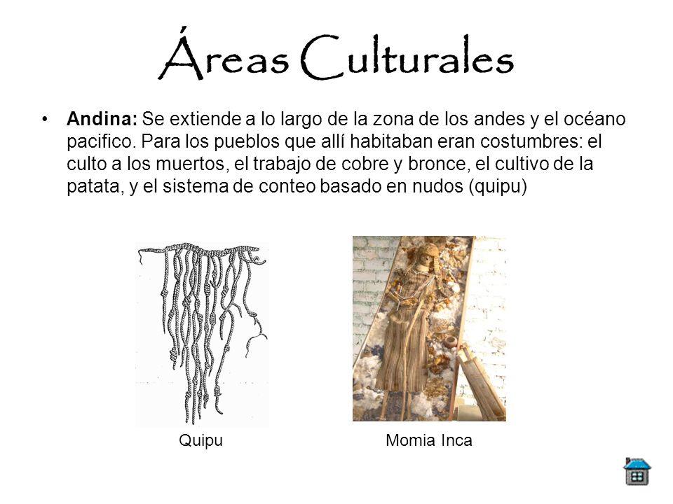 Andina: Se extiende a lo largo de la zona de los andes y el océano pacifico. Para los pueblos que allí habitaban eran costumbres: el culto a los muert