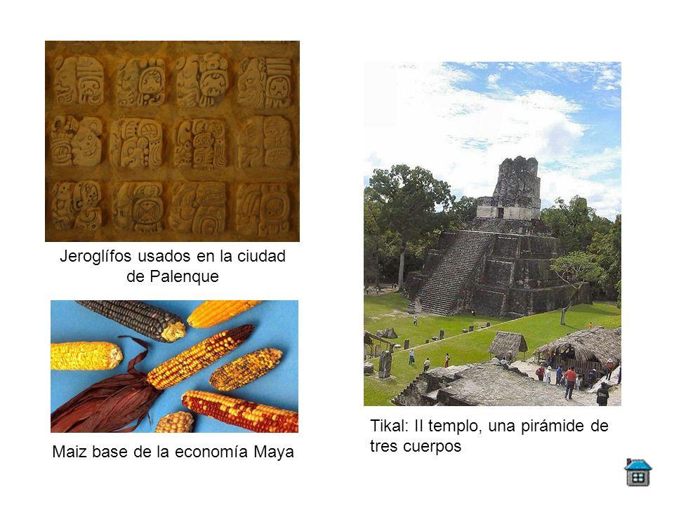 Maiz base de la economía Maya Jeroglífos usados en la ciudad de Palenque Tikal: II templo, una pirámide de tres cuerpos