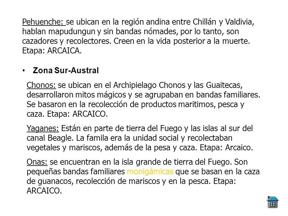 Zona Sur-Austral Pehuenche: se ubican en la región andina entre Chillán y Valdivia, hablan mapudungun y sin bandas nómades, por lo tanto, son cazadore