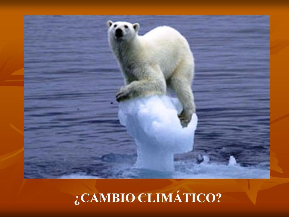 ¿CAMBIO CLIMÁTICO?