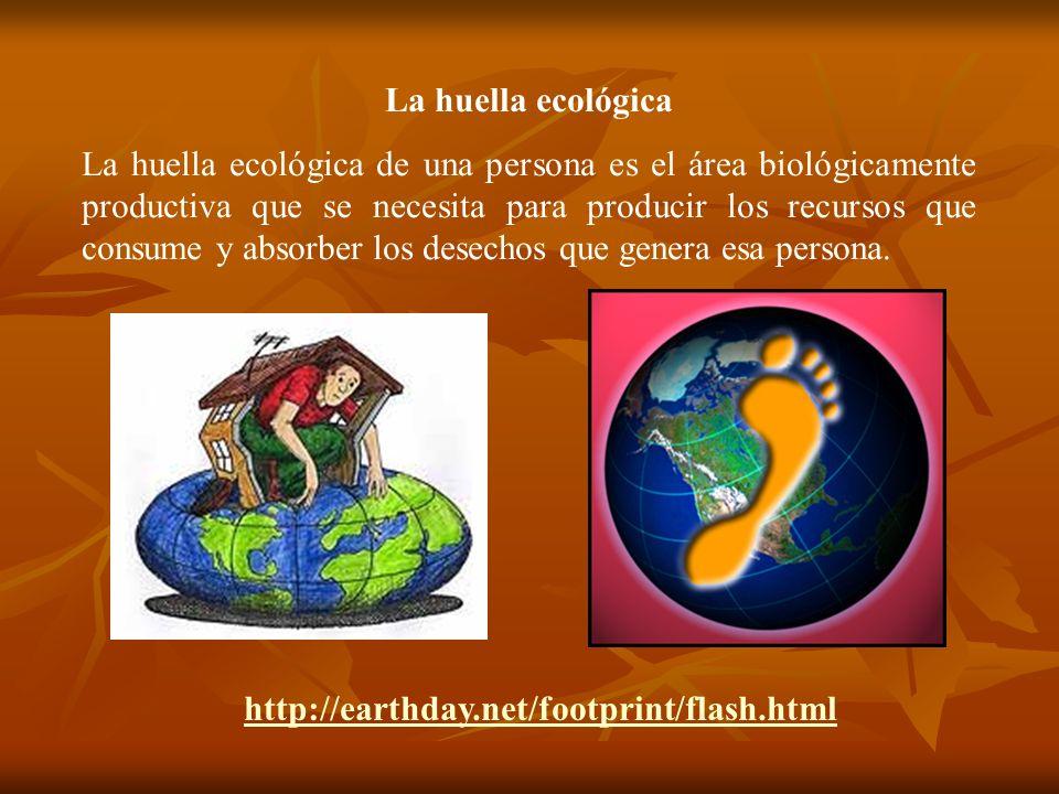 La huella ecológica La huella ecológica de una persona es el área biológicamente productiva que se necesita para producir los recursos que consume y a
