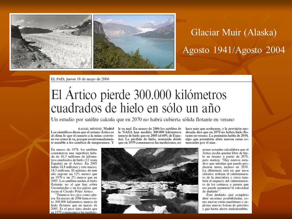 Glaciar Muir (Alaska) Agosto 1941/Agosto 2004