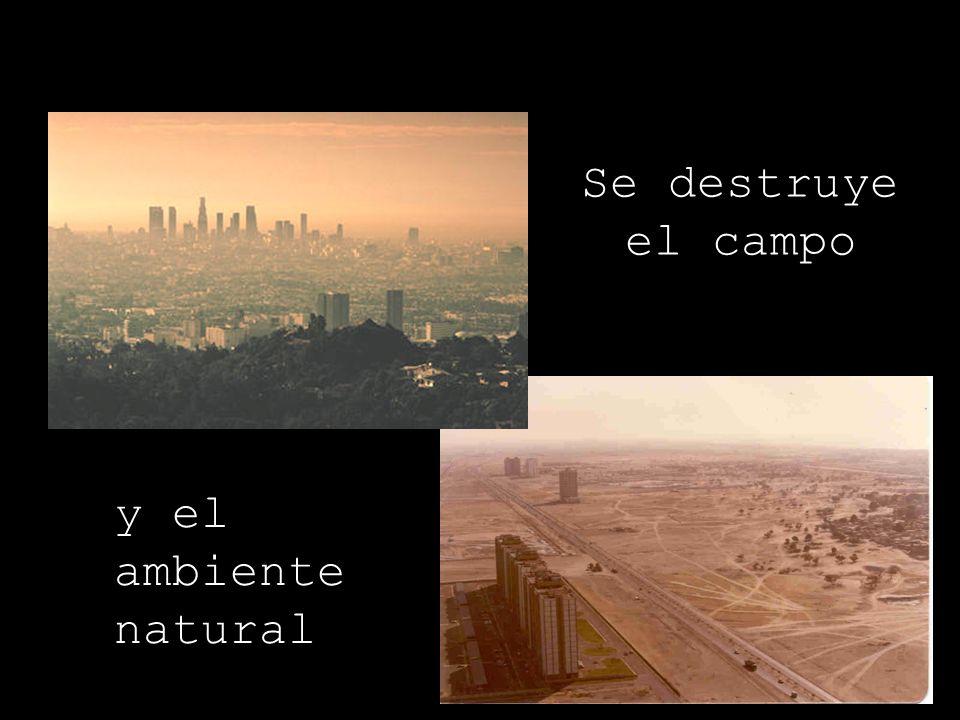 Se destruye el campo y el ambiente natural