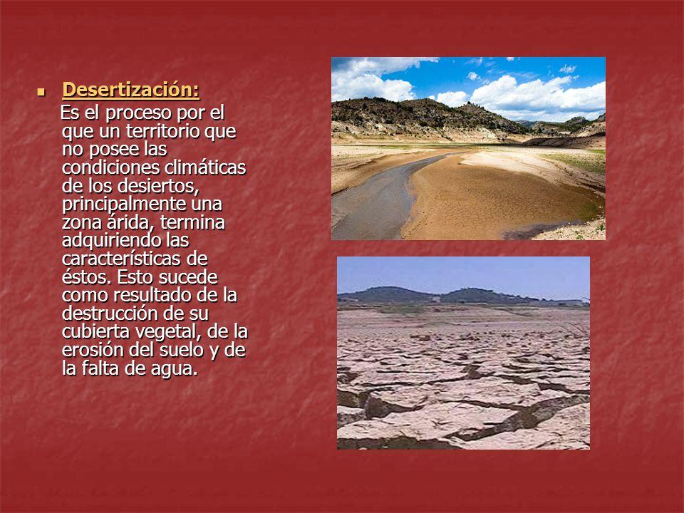 Desertización: Desertización: Desertización: Es el proceso por el que un territorio que no posee las condiciones climáticas de los desiertos, principalmente una zona árida, termina adquiriendo las características de éstos.