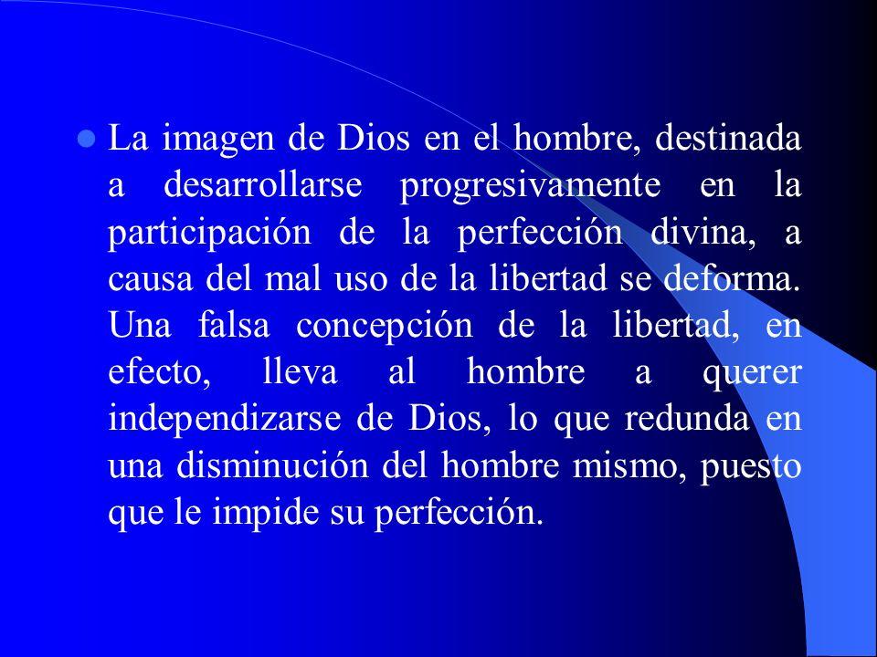 La imagen de Dios en el hombre, destinada a desarrollarse progresivamente en la participación de la perfección divina, a causa del mal uso de la liber