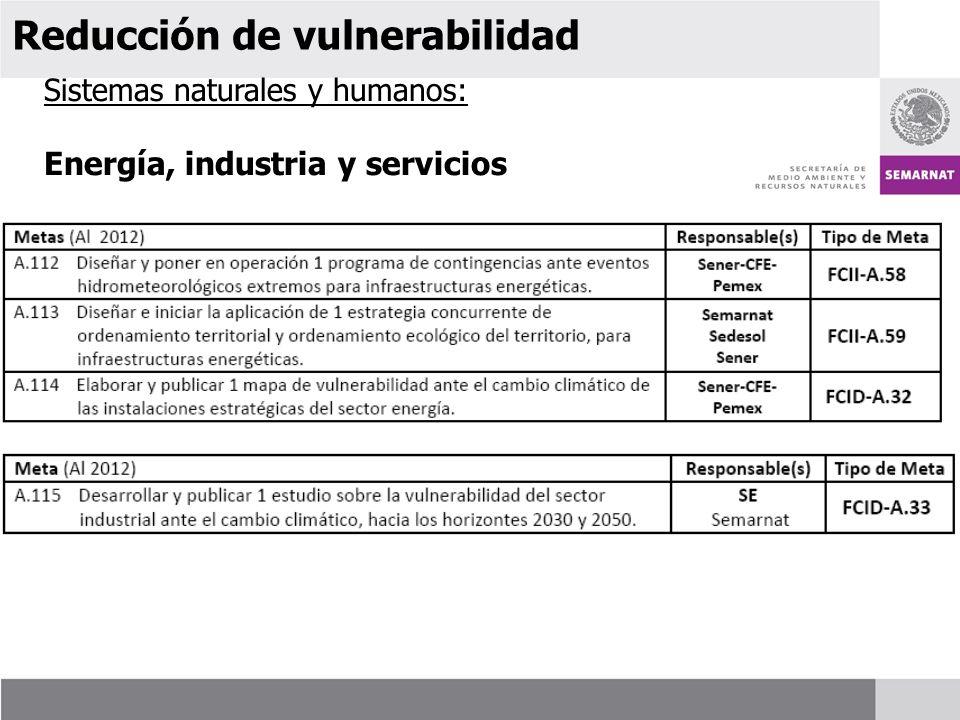 Sistemas naturales y humanos: Energía, industria y servicios Reducción de vulnerabilidad