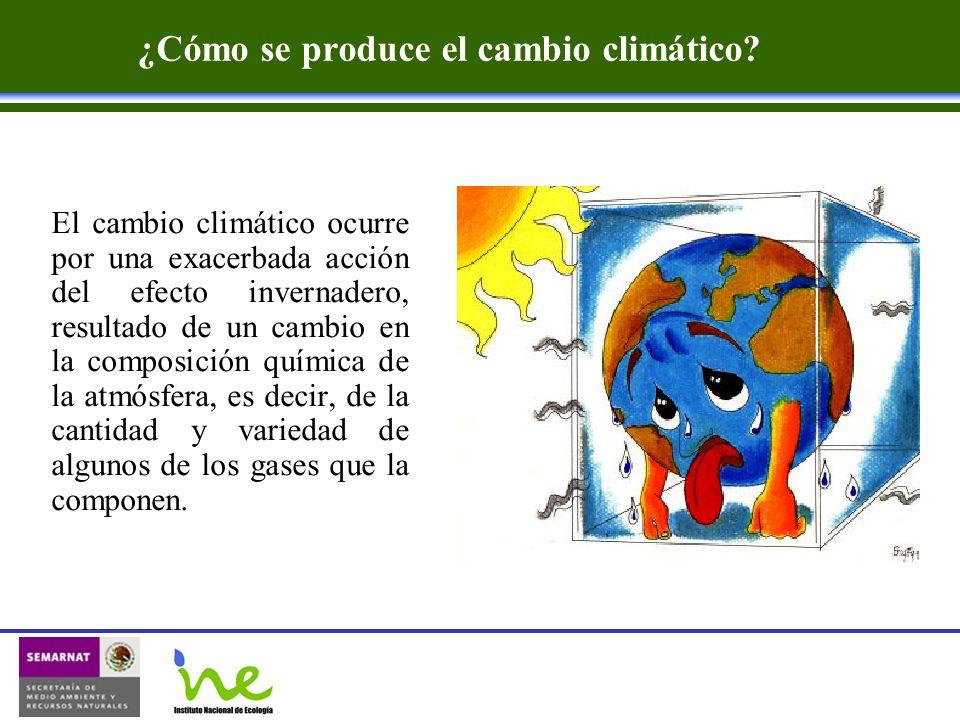 ¿Cómo se produce el cambio climático? El cambio climático ocurre por una exacerbada acción del efecto invernadero, resultado de un cambio en la compos
