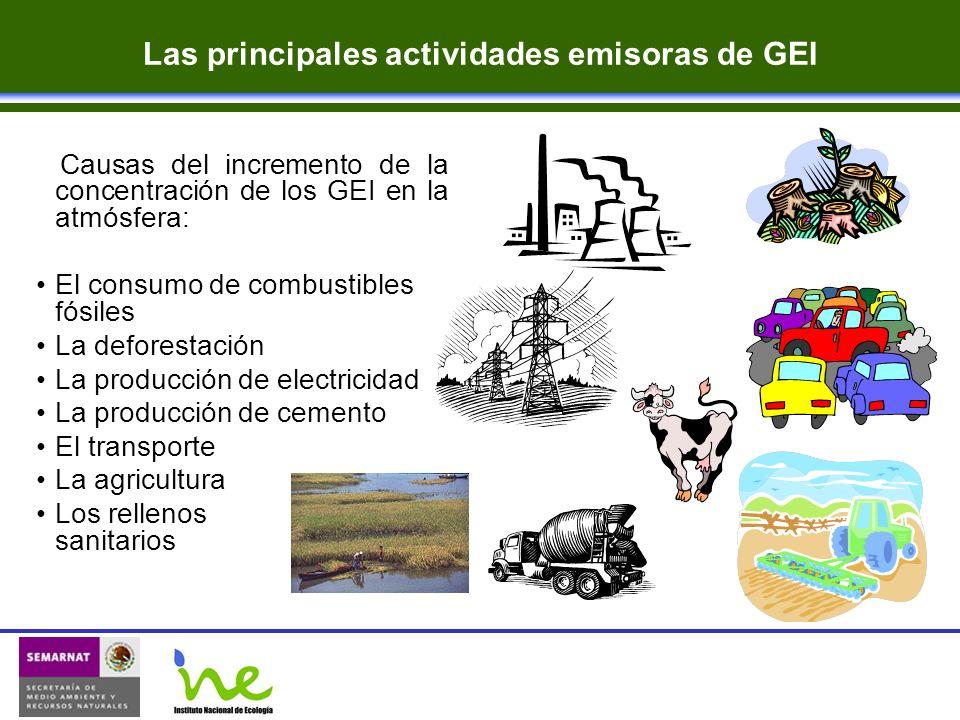 Causas del incremento de la concentración de los GEI en la atmósfera: El consumo de combustibles fósiles La deforestación La producción de electricida