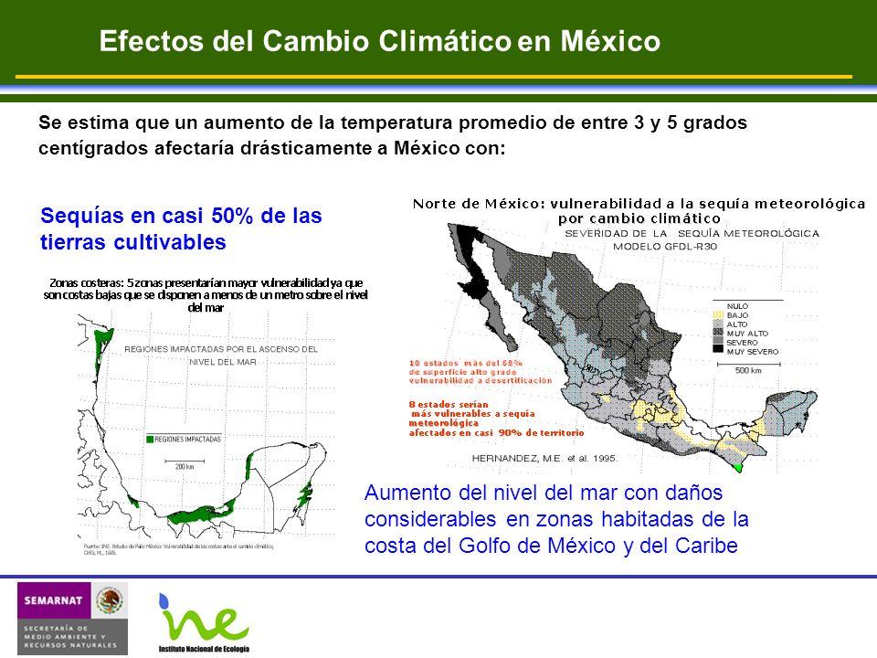 Efectos del Cambio Climático en México Se estima que un aumento de la temperatura promedio de entre 3 y 5 grados centígrados afectaría drásticamente a