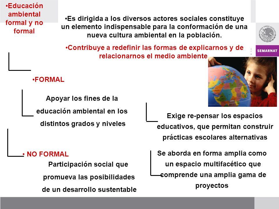 Es dirigida a los diversos actores sociales constituye un elemento indispensable para la conformación de una nueva cultura ambiental en la población.