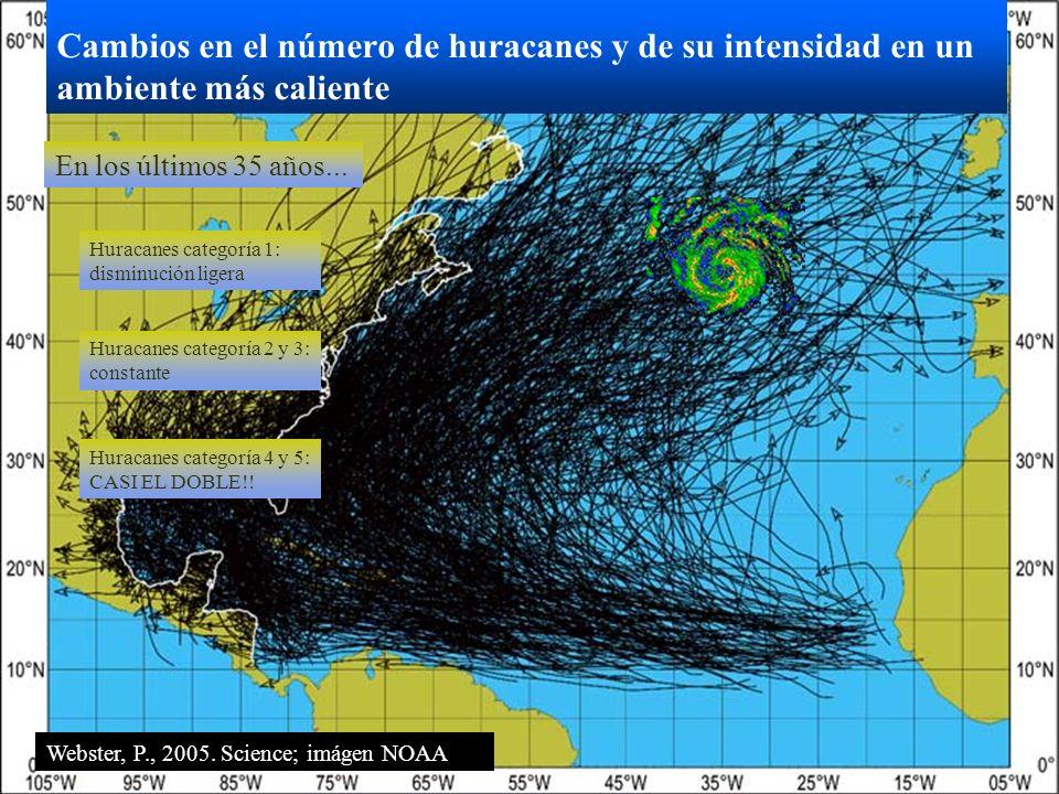 Cambios en el número de huracanes y de su intensidad en un ambiente más caliente Huracanes categoría 1: disminución ligera Huracanes categoría 2 y 3:
