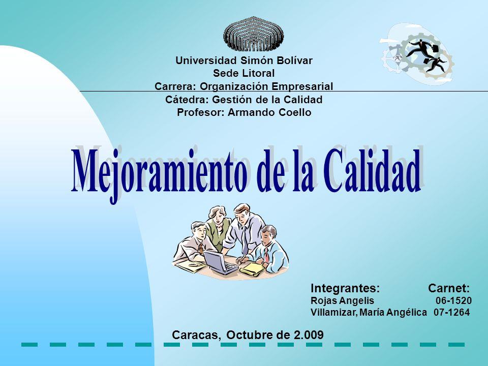 Introducción Mejoramiento de la Calidad Organizaciones Centradas en Procesos.