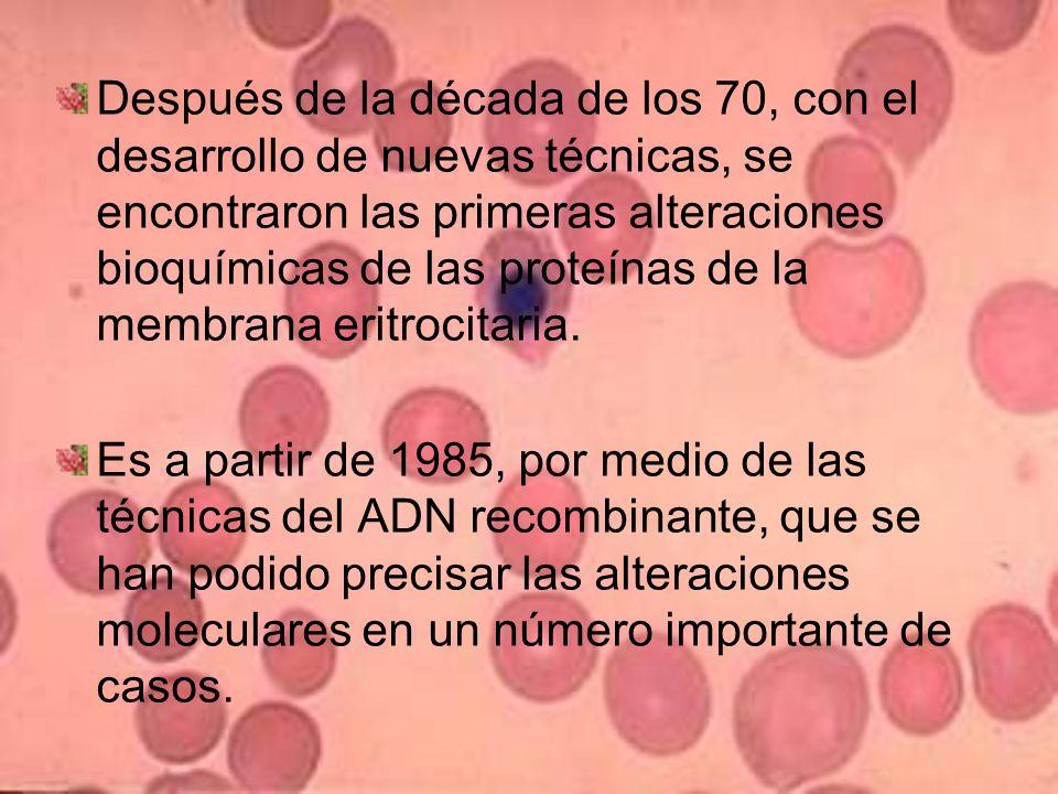 Epidemiología La EH es la anemia hemolítica más frecuente en el mundo.