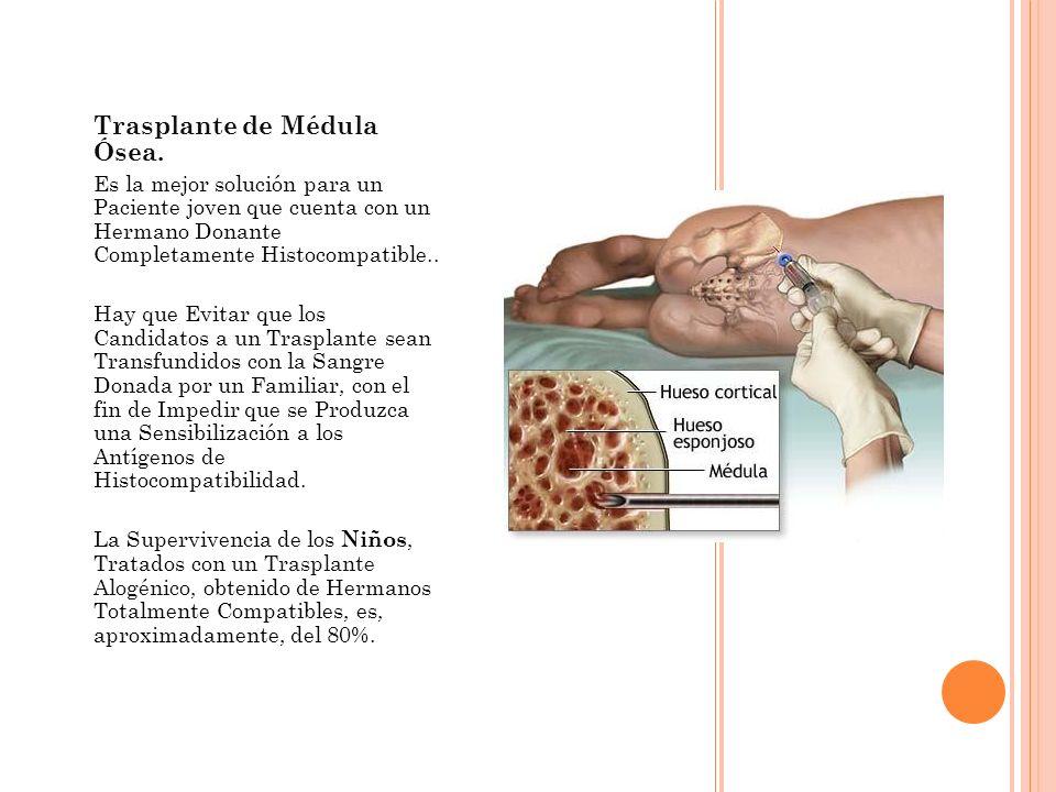 Trasplante de Médula Ósea. Es la mejor solución para un Paciente joven que cuenta con un Hermano Donante Completamente Histocompatible.. Hay que Evita