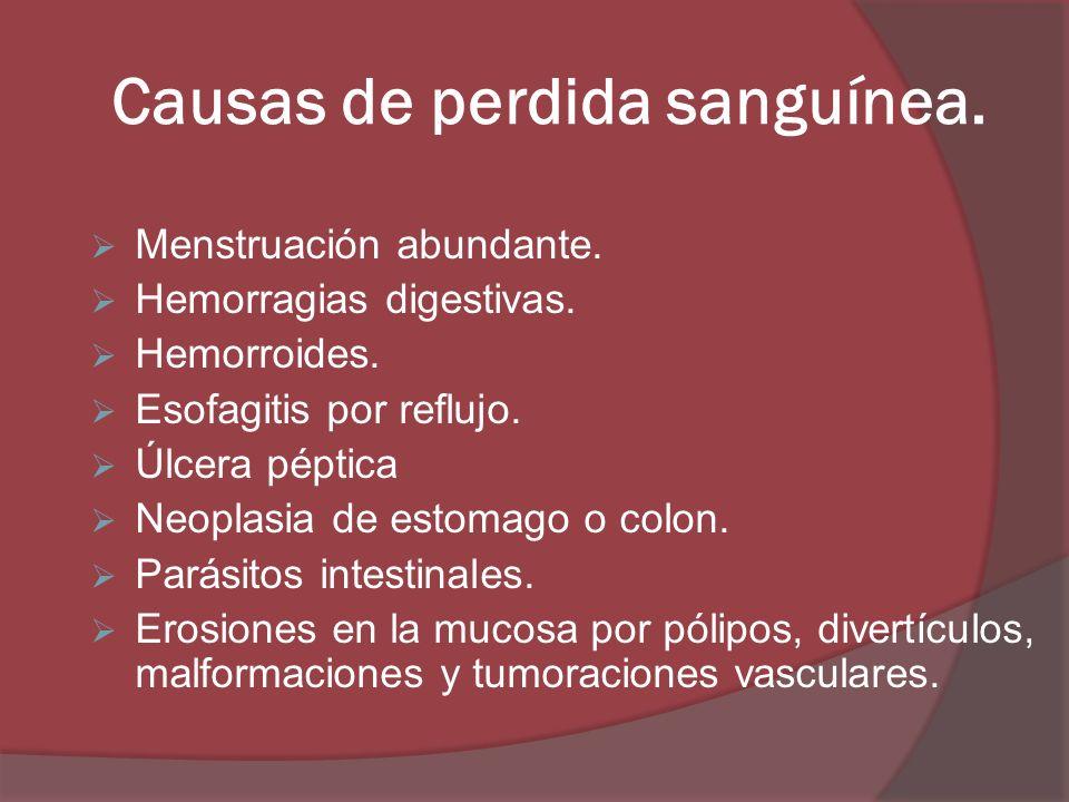 Causas de perdida sanguínea. Menstruación abundante. Hemorragias digestivas. Hemorroides. Esofagitis por reflujo. Úlcera péptica Neoplasia de estomago