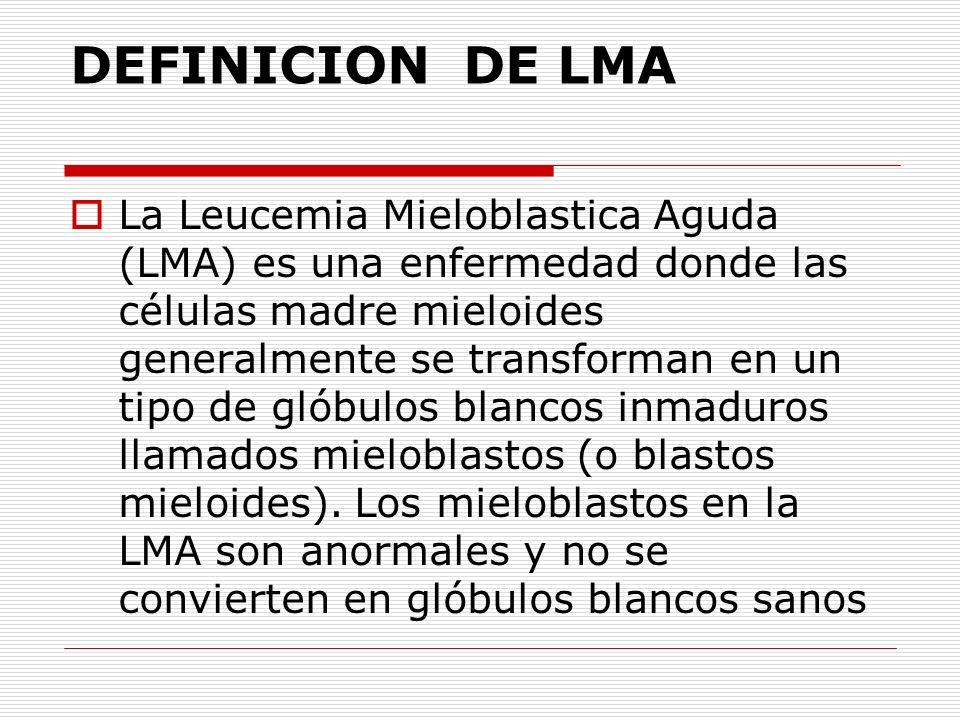 DEFINICION DE LMA La Leucemia Mieloblastica Aguda (LMA) es una enfermedad donde las células madre mieloides generalmente se transforman en un tipo de