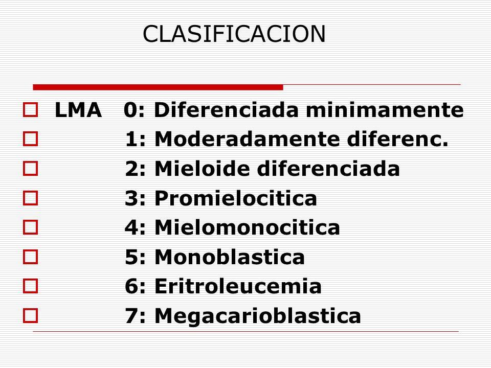 CLASIFICACION LMA 0: Diferenciada minimamente 1: Moderadamente diferenc. 2: Mieloide diferenciada 3: Promielocitica 4: Mielomonocitica 5: Monoblastica