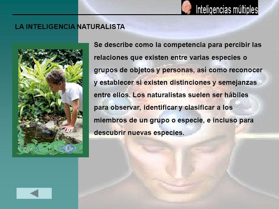 LA INTELIGENCIA NATURALISTA Se describe como la competencia para percibir las relaciones que existen entre varias especies o grupos de objetos y perso