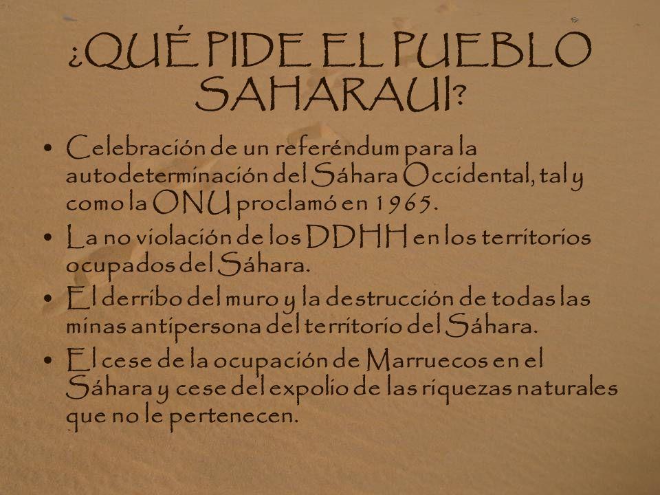 A FAVOR DEL PUEBLO SAHARAUI: El 80% de la población española está a favor de la causa justa saharaui. Mantiene desde 1991 la lucha pacífica y democrát
