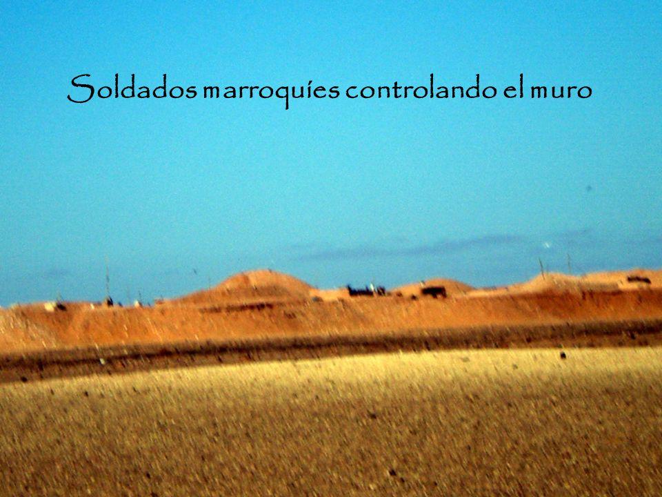 ¿QUÉ PUEDE CREAR EL CAMBIO? La presión internacional puede cambiar el rumbo del pueblo saharaui. La información de la población es ahora el cometido m
