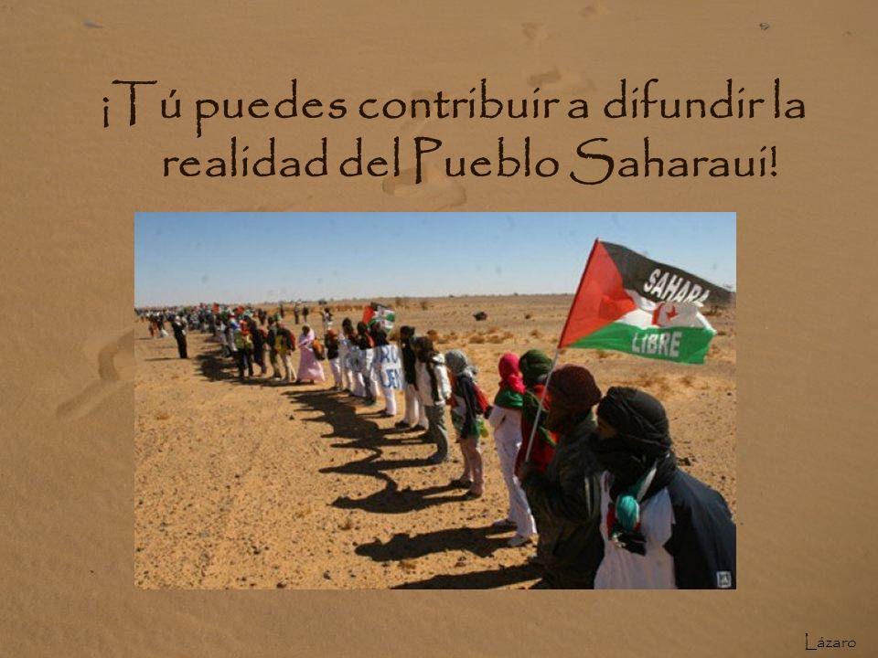 Saharauis al lado del muro